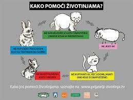 kako pomoći životinjama