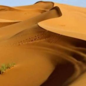 pjesak