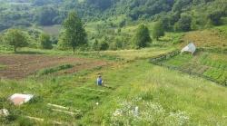 meditacija i odmor na putu do vrta :-)